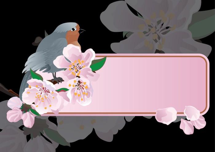 Vinylová Tapeta Pták na větvi kvetoucí meruňkový pozadí - Roční období