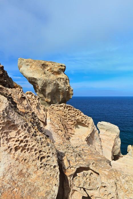 Cuadro en lienzo erosin hdrica y elica isla de san pietro cuadro en lienzo erosin hdrica y elica isla de san pietro sciox Gallery