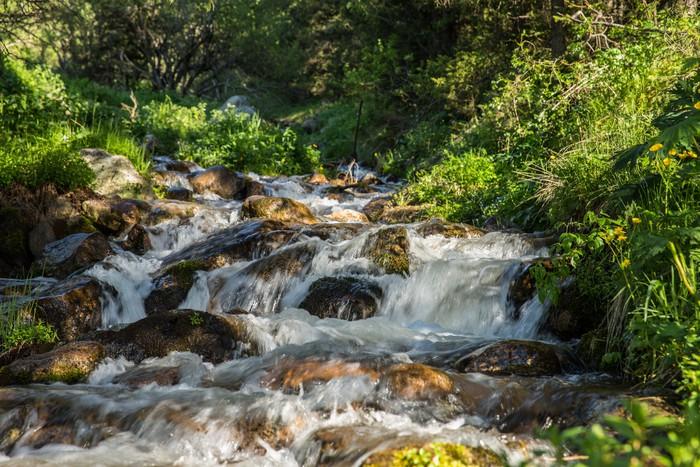 Vinylová Tapeta Povaha zelené stromy a řeky v Almaty v Kazachstánu, v Asii - Asie