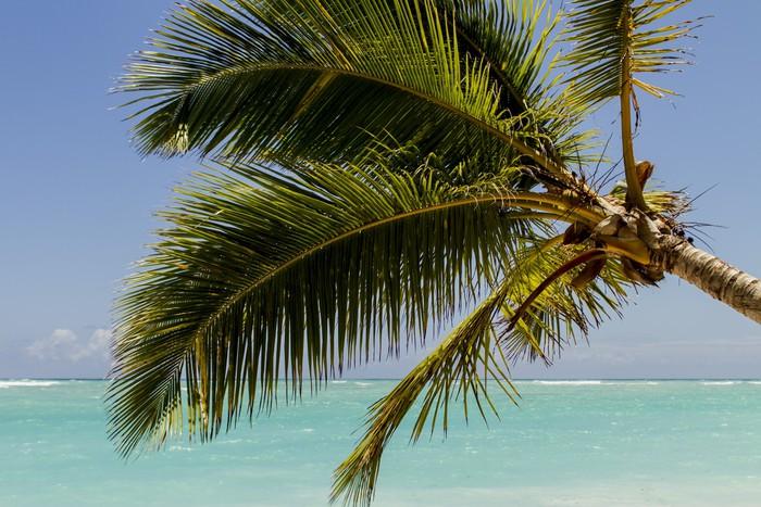 Vinylová Tapeta Karibské moře - Amerika