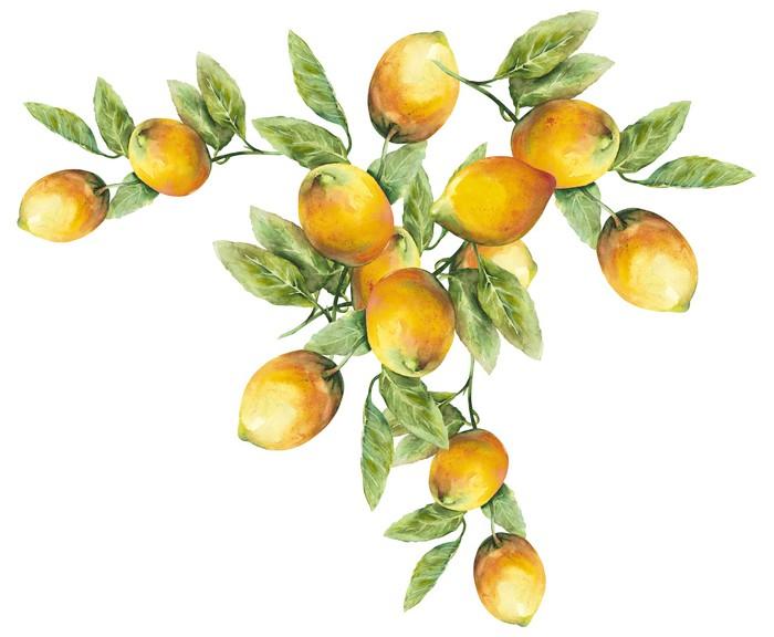 Lemons Pattern Framed Poster - Art and Creation