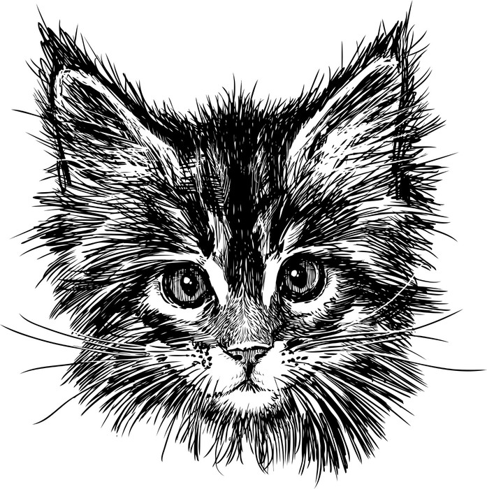 Sticker Pixerstick Portrait de chat -