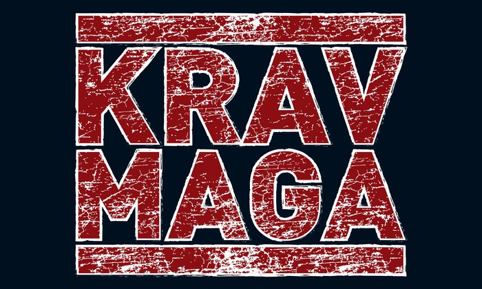 Krav Maga Poster Pixers We Live To Change