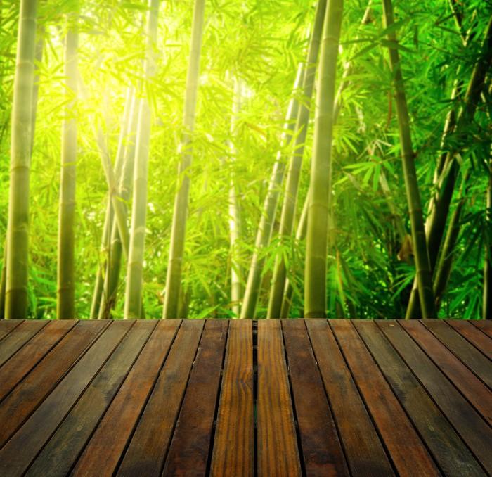 fototapete bambus wald mit ray der lichter und dielen wald geeignet f r p pixers wir leben. Black Bedroom Furniture Sets. Home Design Ideas
