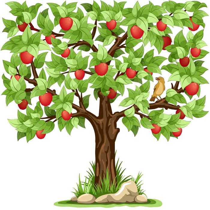 Apple tree wall mural pixers we live to change for Apple tree mural