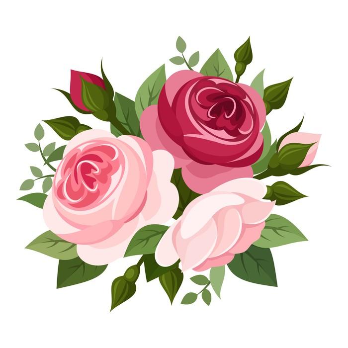 Vinylová Tapeta Červené a růžové růže. Vektorové ilustrace. - Květiny