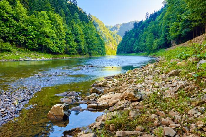 Vinylová Tapeta Kameny a skály v ráno v Dunajec River Gorge - Témata