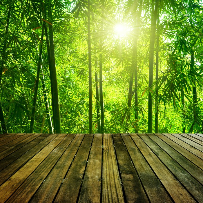 Bamboo forest wall mural pixers we live to change for Bamboo forest mural wallpaper