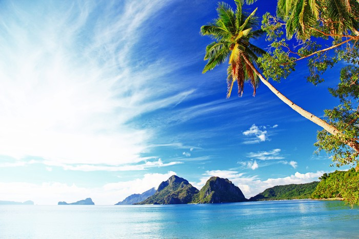 Vinylová Tapeta Tropické pozadí - Prázdniny