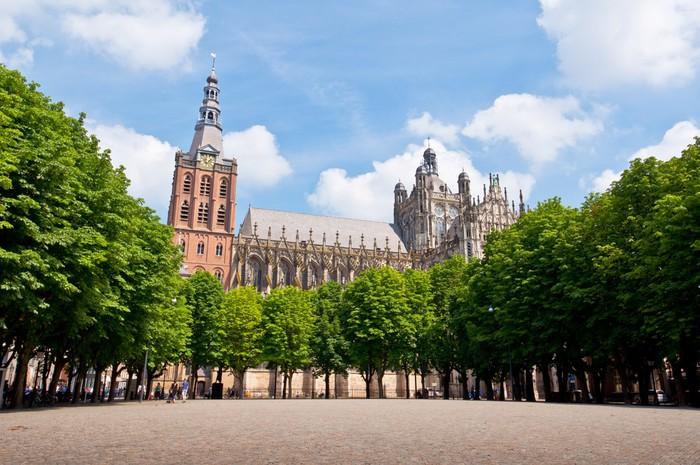 Vinylová Tapeta Krásná gotická katedrála v Den Bosch City, Nizozemsko - Evropa