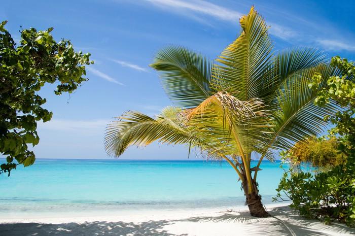 Vinylová Tapeta Bílý písek pláž oceán a modrá obloha - Prázdniny