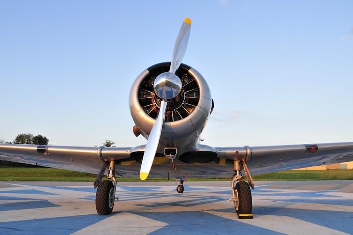 Vinylová Tapeta WWII trenér letouny - Vzduch