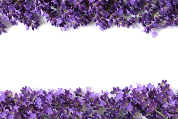 fototapete rahmen mit lavendel pixers wir leben um. Black Bedroom Furniture Sets. Home Design Ideas