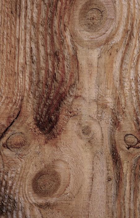 Vinylová Tapeta Pozadí textury dřeva - Těžký průmysl