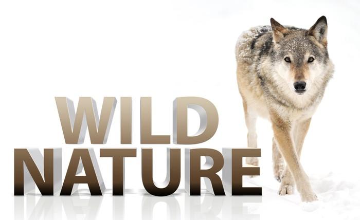 Sticker Pixerstick Wolf - Mammifères