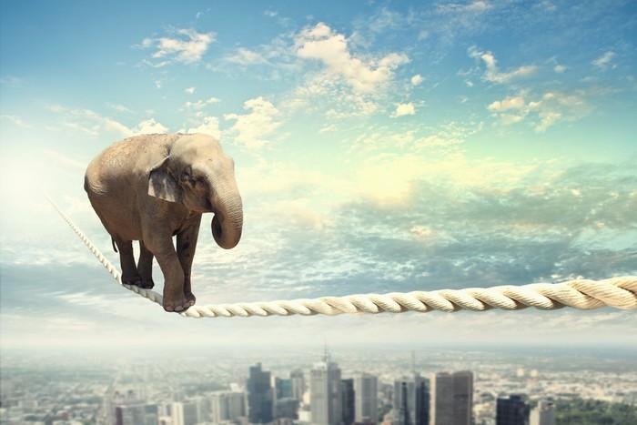 Sticker Pixerstick Elephant Walking On Rope - Thèmes