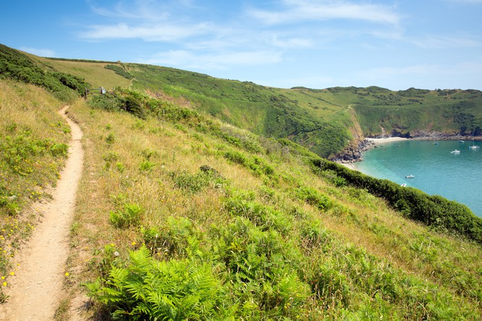Vinylová Tapeta South West West Coast Path Lantic Bay Cornwall England - Evropa