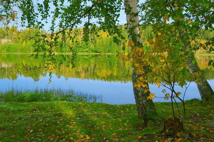 Vinylová fototapeta Na břehu krásného jezera. Finsko (3) - Vinylová fototapeta