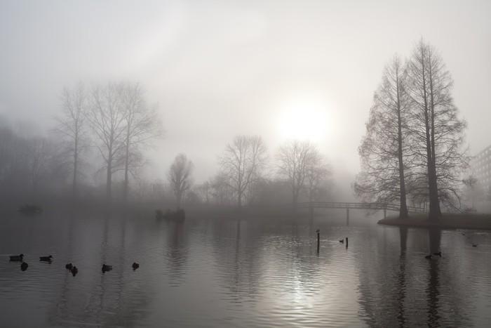 Vinylová Tapeta Strom silueta, most a jezero v mlze - Roční období