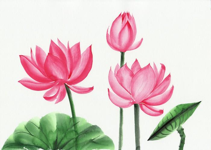 Watercolor painting of pink lotus flower wall mural pixers we watercolor painting of pink lotus flower vinyl wall mural art and creation mightylinksfo