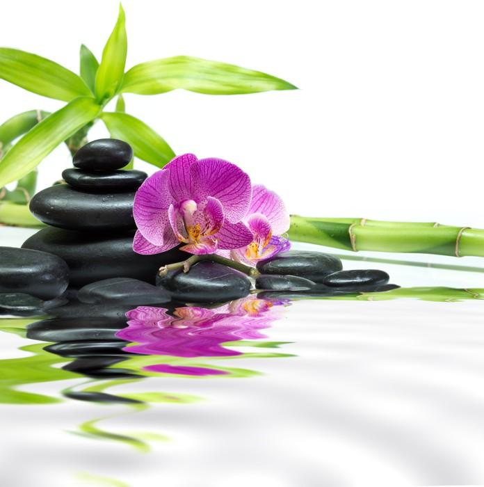 fototapete lila orchideen mit bambus turm schwarze steine. Black Bedroom Furniture Sets. Home Design Ideas