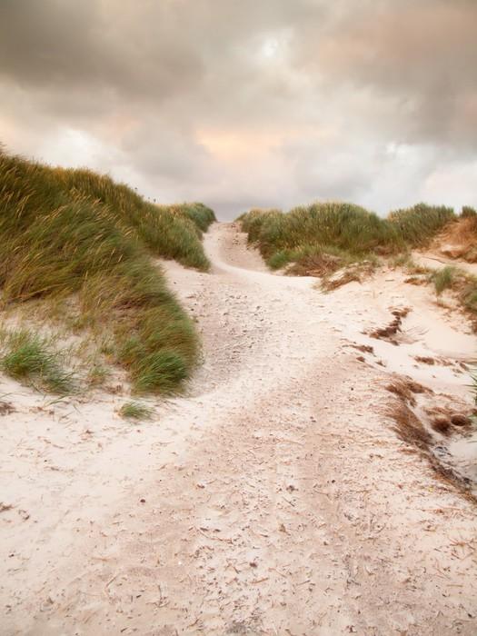 Vinylová Tapeta Písek cesta přes duny krajině pod tmavou zatažené obloze - Evropa