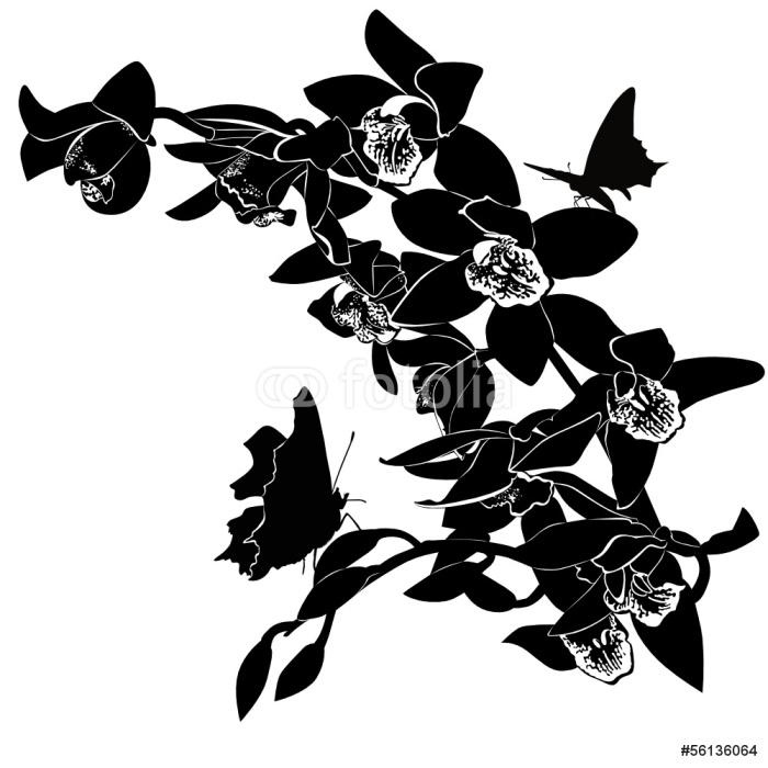 Vinylová Tapeta Tropických motýlů a orchidejí na bílém pozadí - Květiny