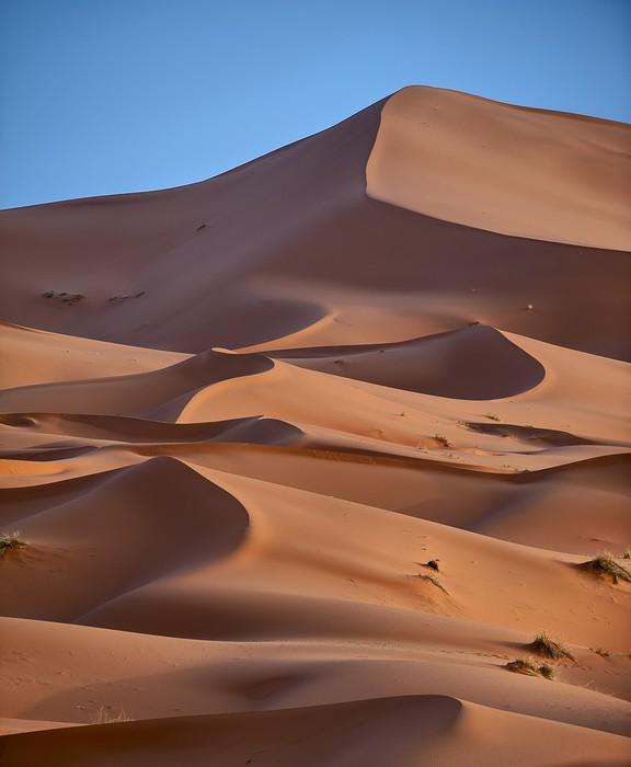 Vinylová fototapeta Sahara - Vinylová fototapeta