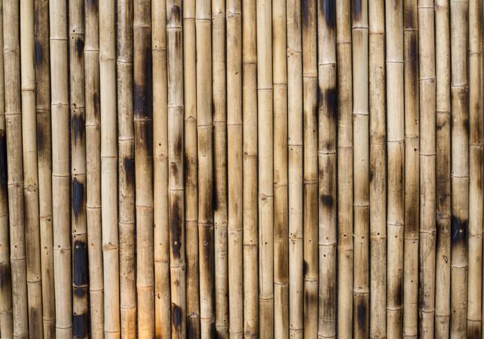 papier peint colonnes de bambou sec pixers nous vivons pour changer. Black Bedroom Furniture Sets. Home Design Ideas