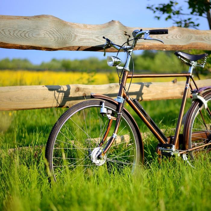 Vinylová Tapeta Staré vintage hnědá jízdních kol v blízkosti plotu z květu pole. Shal - Na cestě