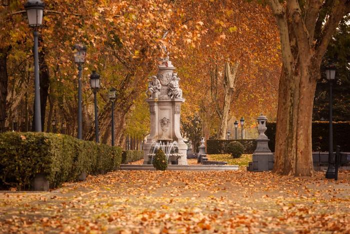 Vinylová Tapeta Romantická krajina z centra Madridu na začátku zimy - Evropská města