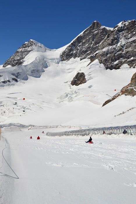 Vinylová Tapeta Jungfraujoch Sáňkování - Prázdniny