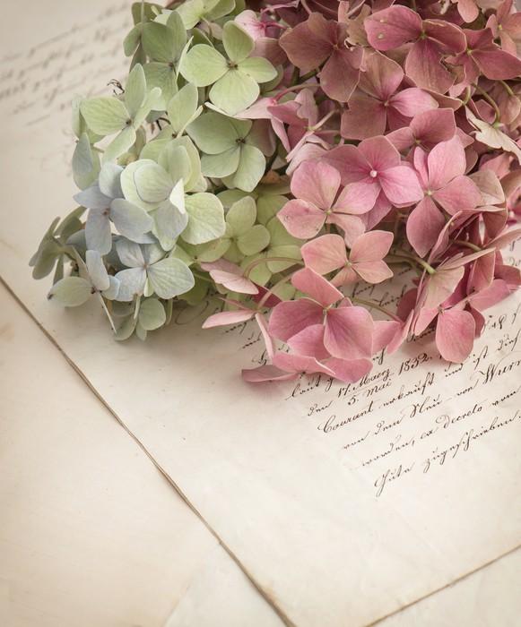 Stare listy miłosne i kwiaty ogrodowe