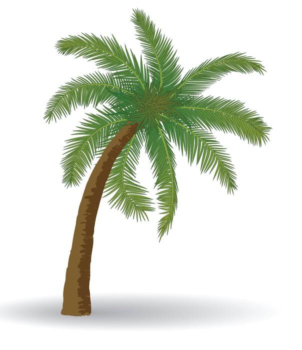 papier peint motifs arbre palmier pixers nous vivons pour changer. Black Bedroom Furniture Sets. Home Design Ideas