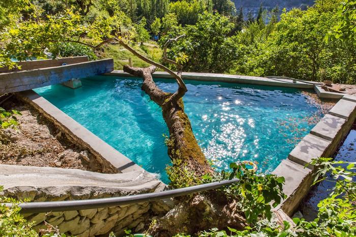 Vinylová Tapeta Velký strom v bazénu v malé krétské vesnice na Krétě - Evropa