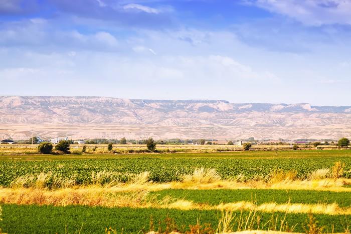 Vinylová Tapeta Venkovské krajiny v Aragonii - Zemědělství