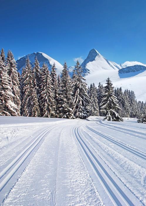 Tableau sur toile piste de ski de fond pixers nous for Piste de ski interieur