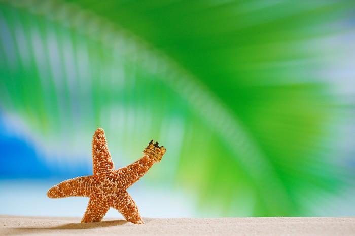 Vinylová Tapeta Hvězdice s korunou, moře, pláže a přímořská krajina - Prázdniny