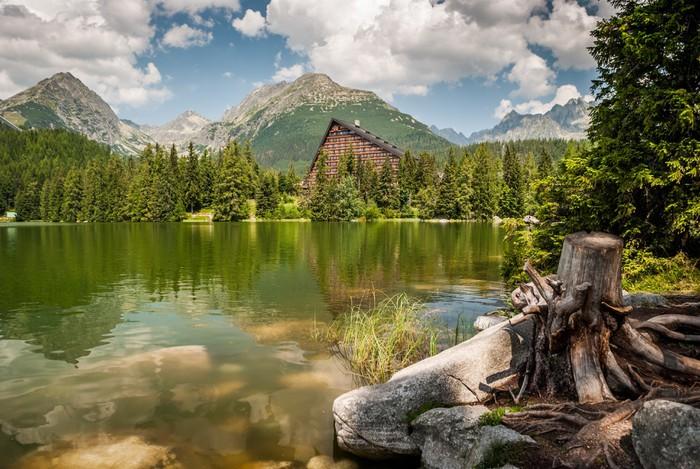 Vinylová Tapeta Rybník v horách v létě - Evropa