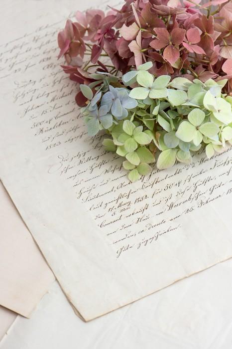 Vinylová Tapeta Starý rukopis a měkké Hortensia květiny - Pozadí