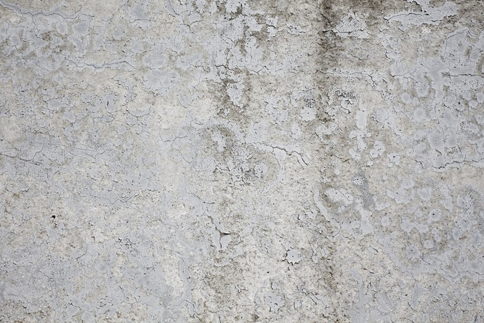 Texture concrete wall Wall Mural Pixers We live to change