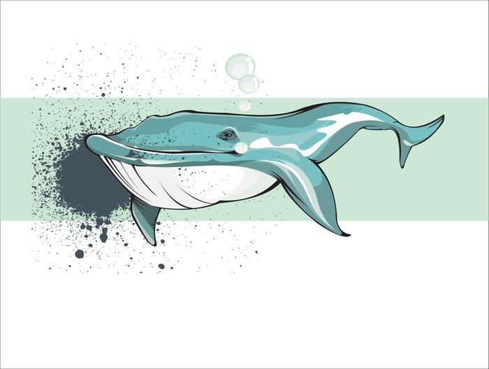 Vinylová Tapeta Veleryba - Vodní a mořský život