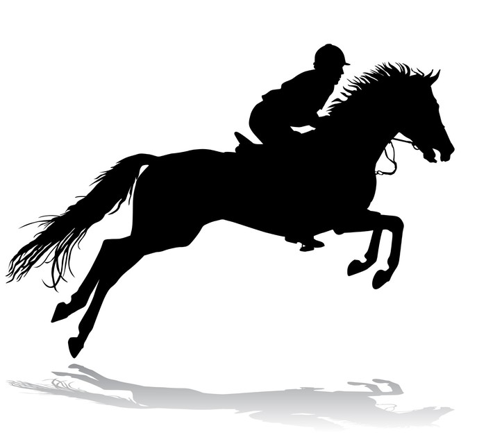 Vinylová Tapeta Jezdec na koni 3 - Muži