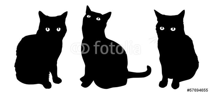 Vinylová Tapeta Čísla Cat - Savci