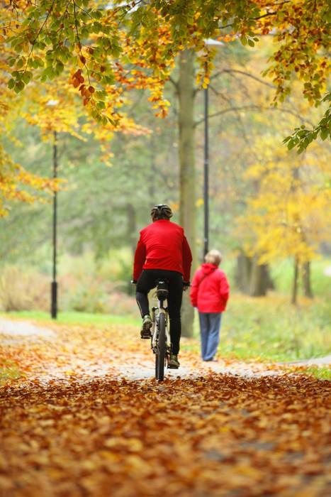 Vinylová Tapeta Na kole venku muže na kole, zlatý podzim v parku - Roční období