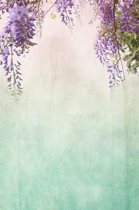 papier peint fond sale avec bordure florale pixers. Black Bedroom Furniture Sets. Home Design Ideas
