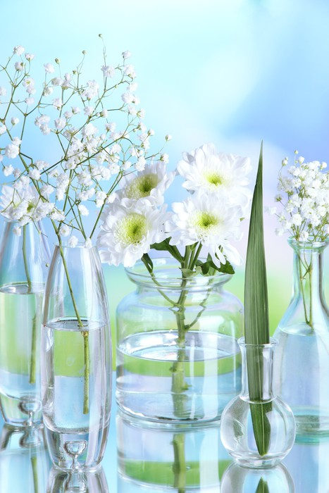 Plants in various glass containers on natural background Vinyl Wallpaper - Flowers