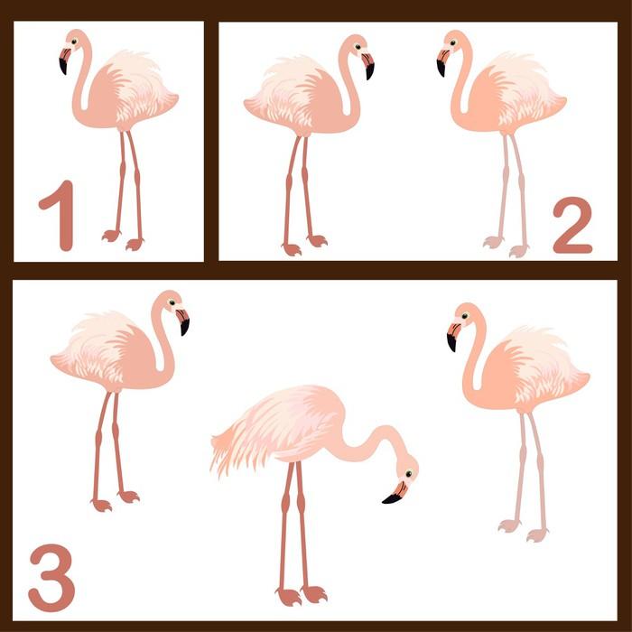 Vinylová Tapeta Flamingo set - Vzdělávání