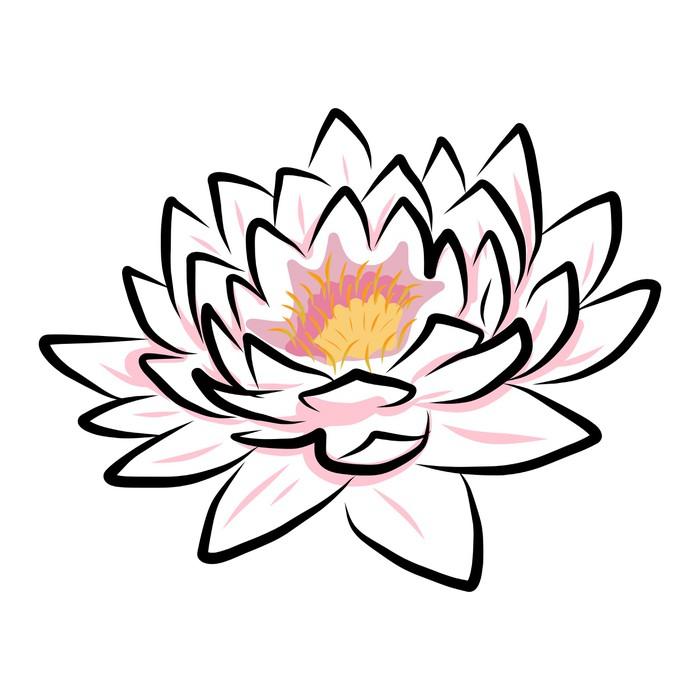 Cuadro En Lienzo Dibujo A Mano Lirio De Agua Flor De Loto Flor