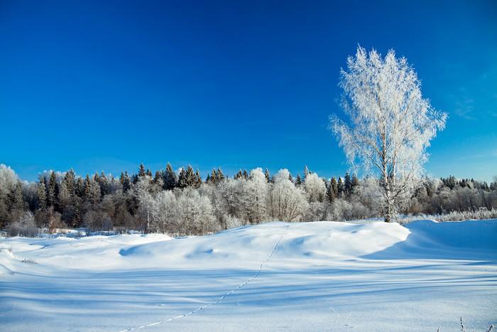 Vinylová Tapeta Zimní venkovské krajiny - Roční období